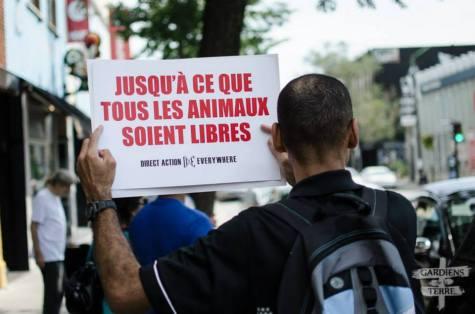 jean-jacques activiste